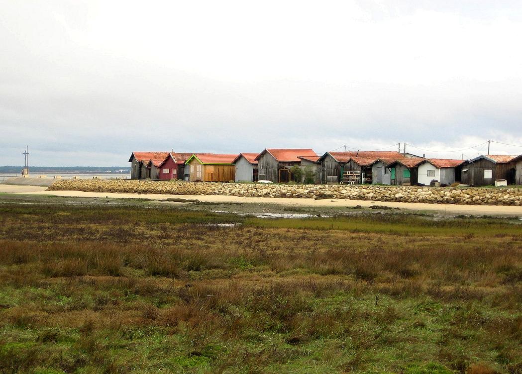 Arcachon Bay Cycle Tour - Velodyssee