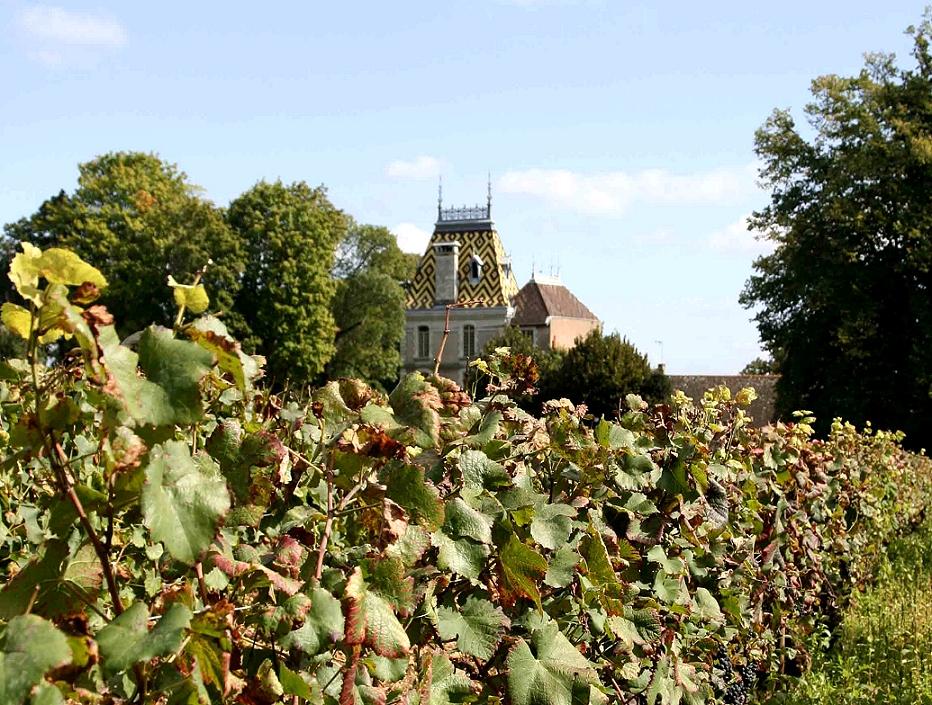Week-end les Grands Vins de Bourgogne - Côte de Beaune... en voiture