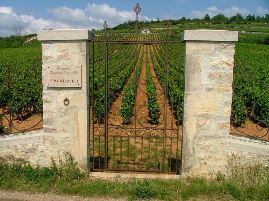 Vignobles et canaux de Bourgogne à vélo.