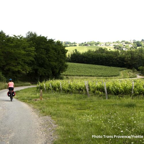 Bike tour from Bordeaux to Arcachon. Cycling holidays in south of Bordeaux region