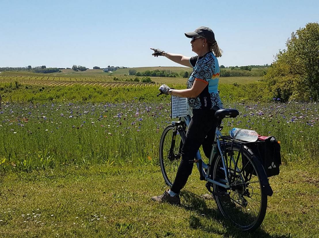 Vélo et Bateau - La Route des Vins de Bordeaux en Gironde