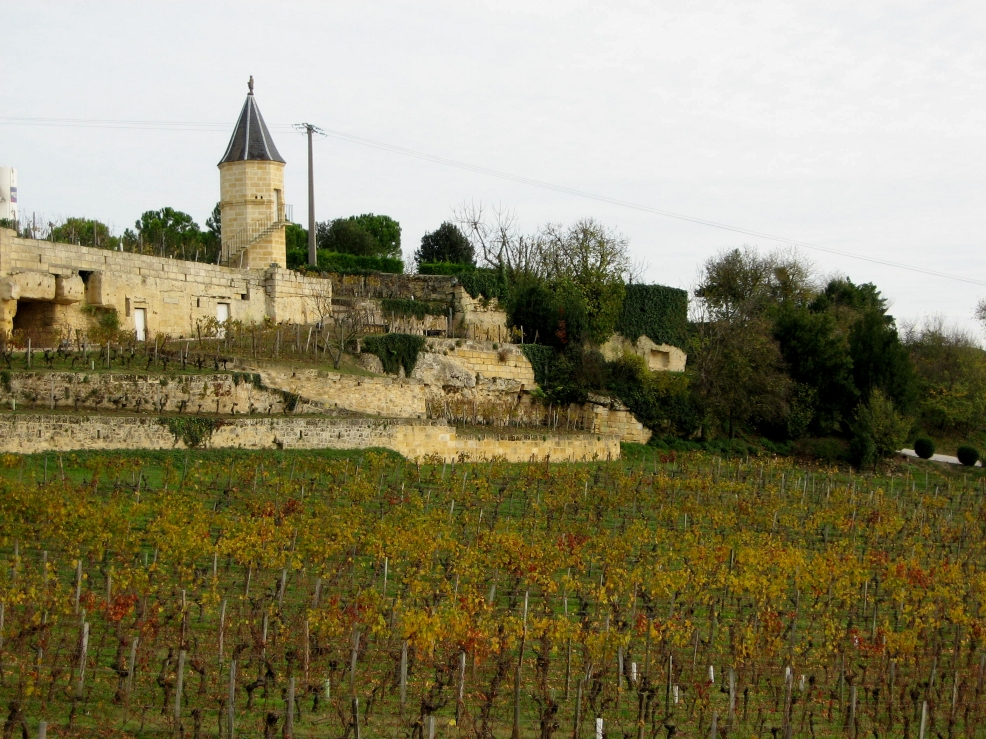 The Best of Bordeaux wines cycle tour