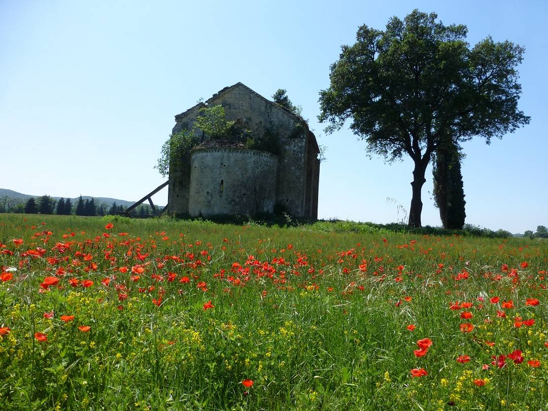 Cycling holiday in Provence and Camargue