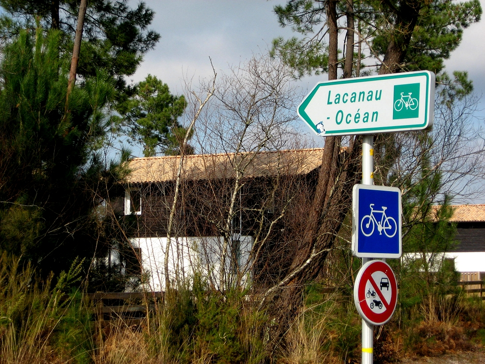 Bike tour in Medoc area: Bordeaux vineyard and ocean coast