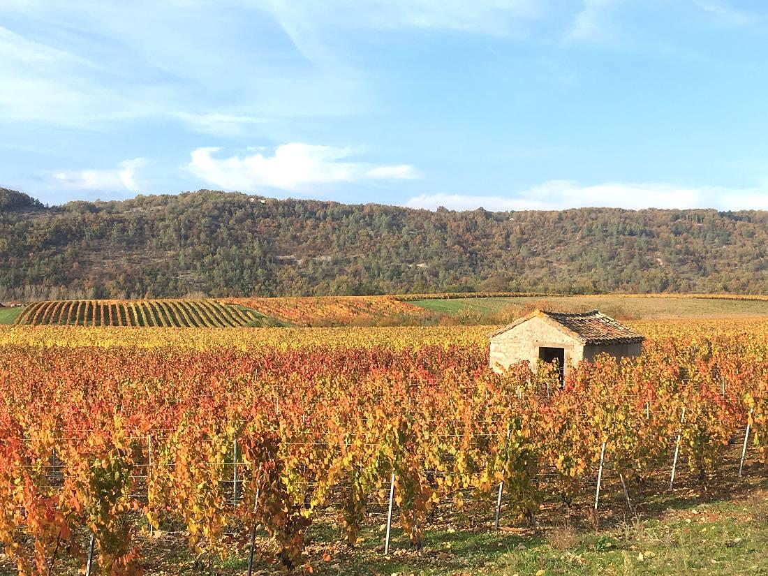 La Vallée du Lot à vélo - de Agen à Cahors