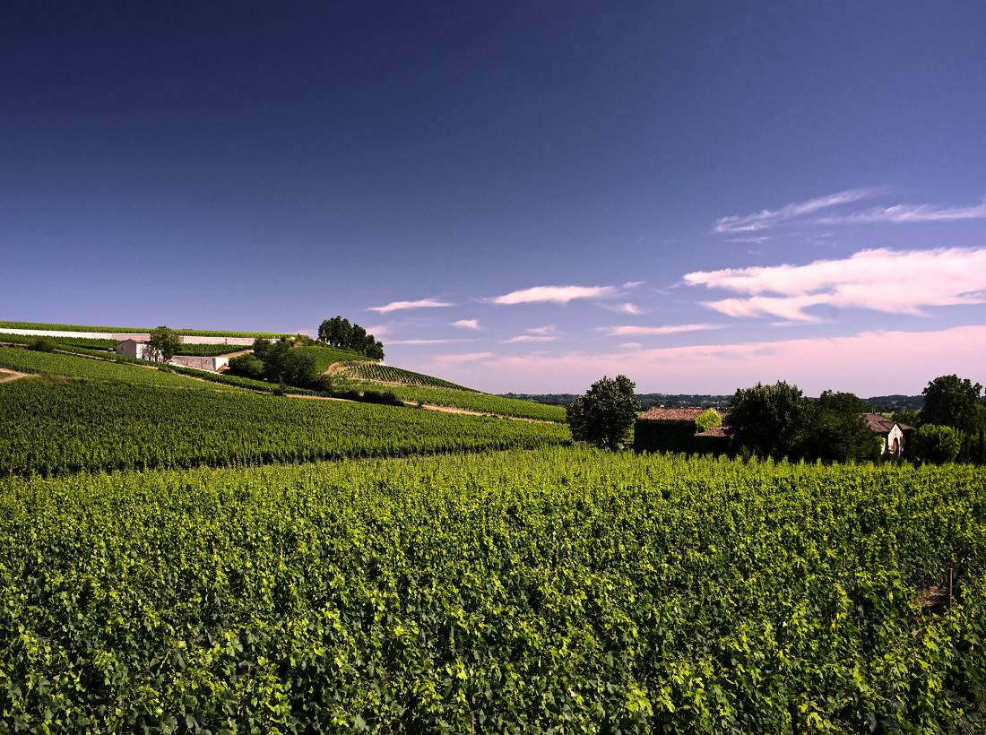 Biking Tour from Bordeaux to Sarlat, along the Dordogne river. Option Lascaux cave and Rocamadour