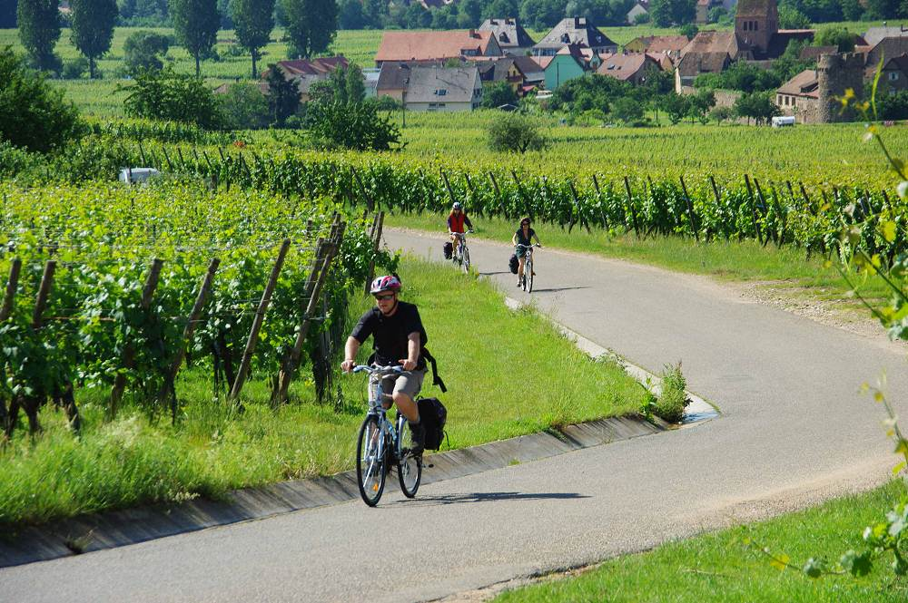 The tour of Alsace by bike