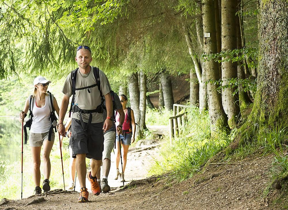 Randonnée pédestre des vignobles d'Alsace aux Ballons des Vosges