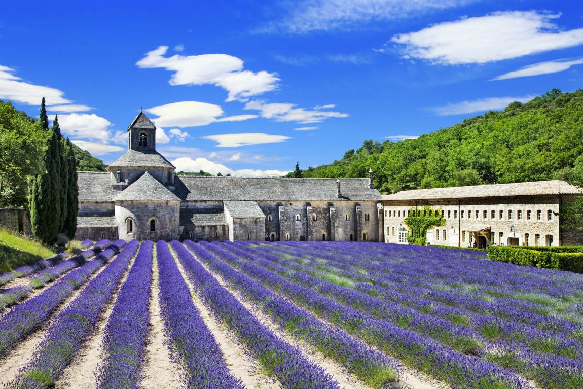 The magic of Provence by bike. Rhône Valley, Mont Ventoux and Luberon