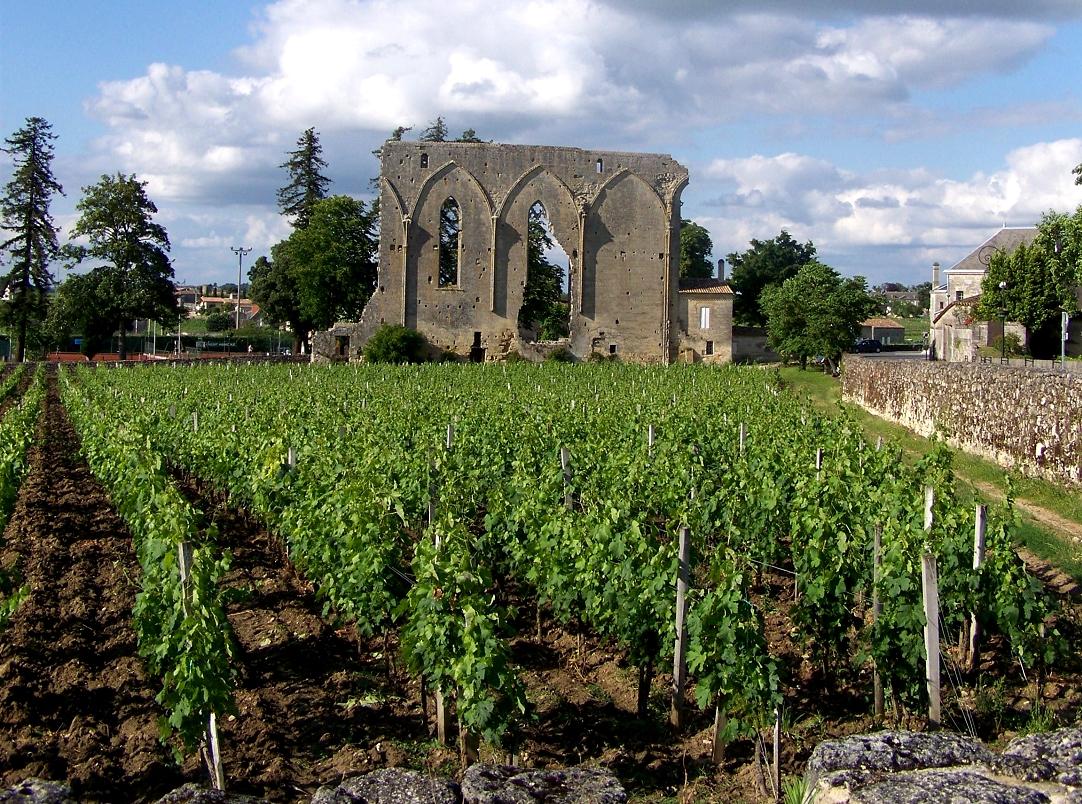 Circuit groupe Entre Terre et Mer - Bordeaux Arcachon Saint-Emilion