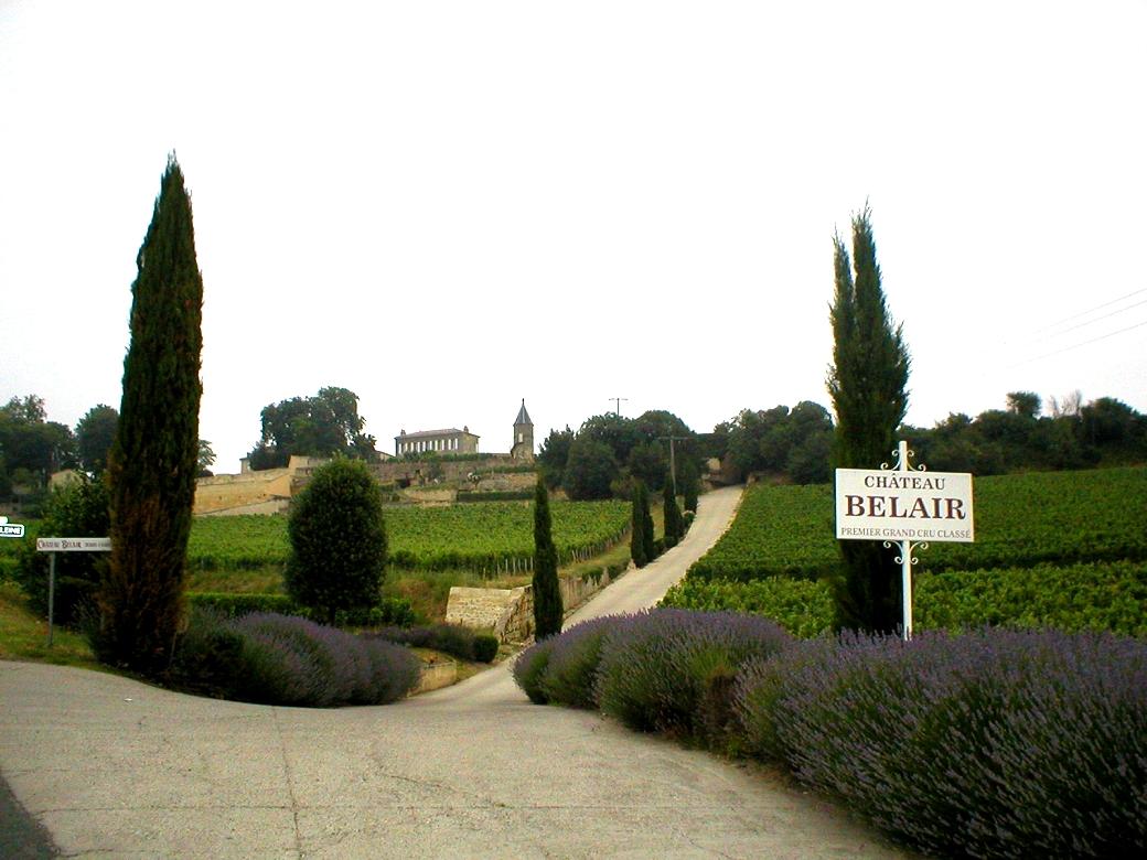 Randonnée dans les vignobles bordelais de Saint-émilion à Sauternes