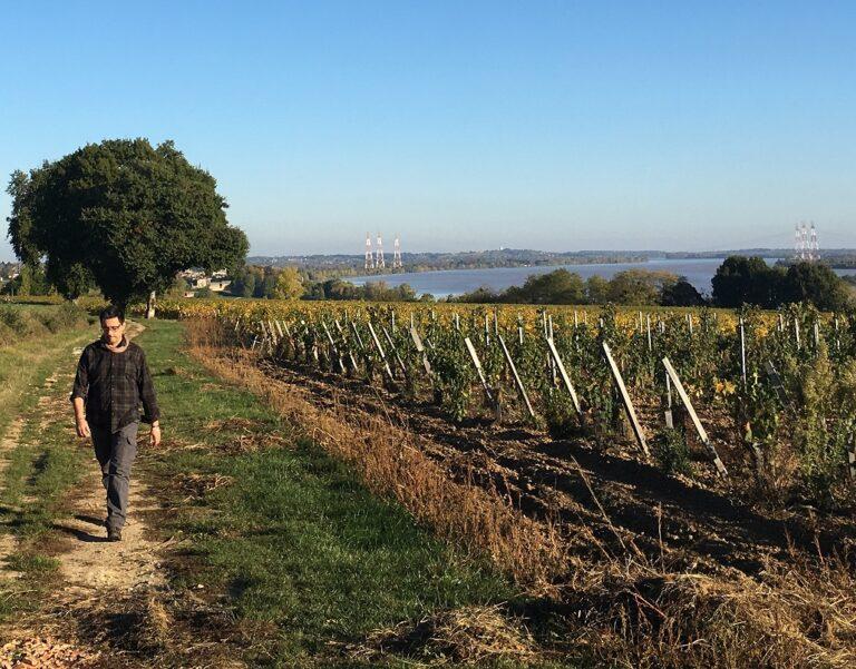 Week-end route des vins de Bordeaux - Dégustation de vins à Saint-émilion
