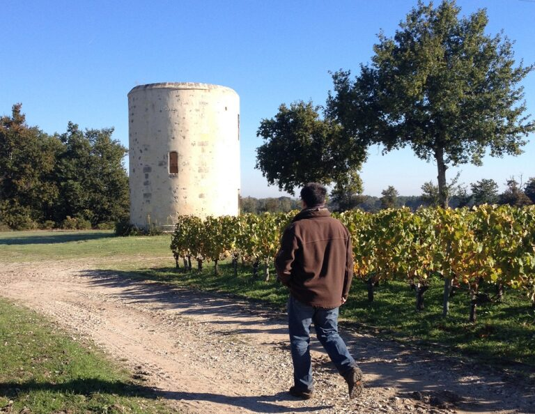 Cycling in Entre deux mers vineyards near Bordeaux