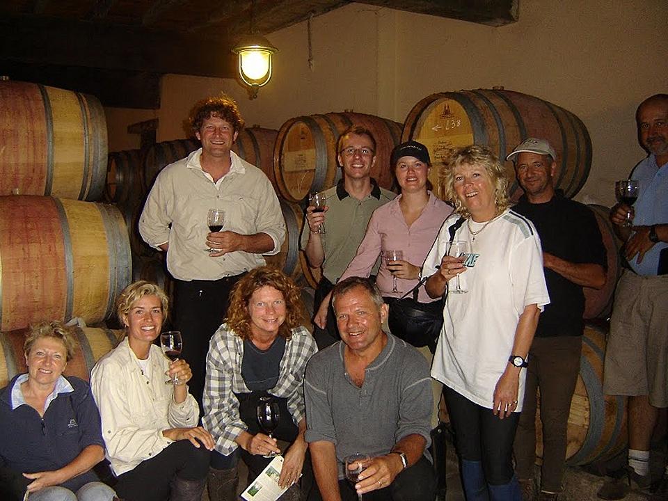 Vines and Gironde estuary near bordeaux. Medoc vineyards walking tour
